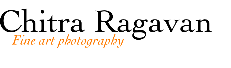 Certificate Of Authenticity Chitra Ragavan
