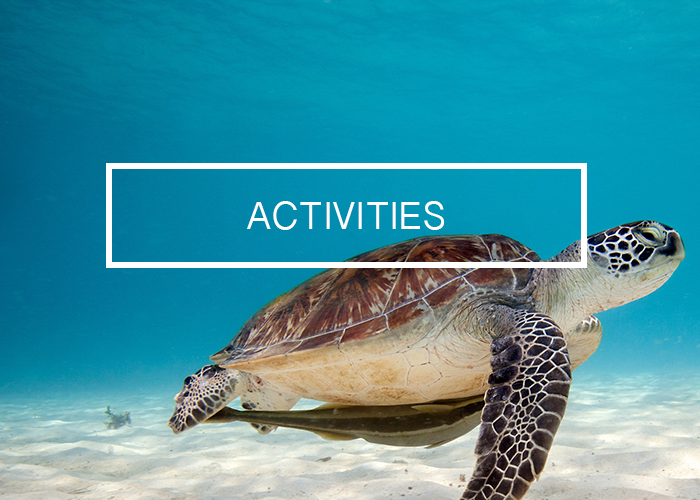 Activities_Cayman