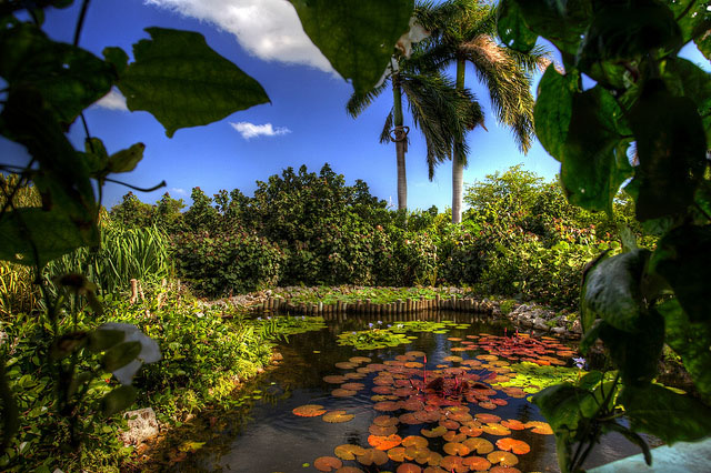 Botanic+Park+Cayman.jpg