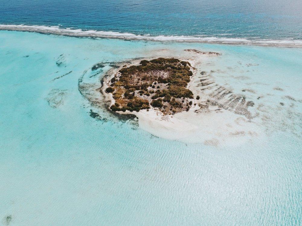 Owen+Island.jpg