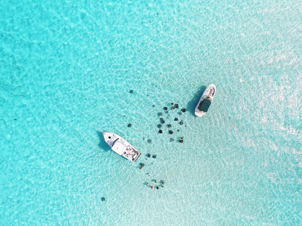 A must-see attraction when you're here in Cayman! #StingrayCity #CaymanIslands #RegalBeachLife #DJI #Drone photo by @vagabondmediagroup for @thisiscaymantv  (1).jpg