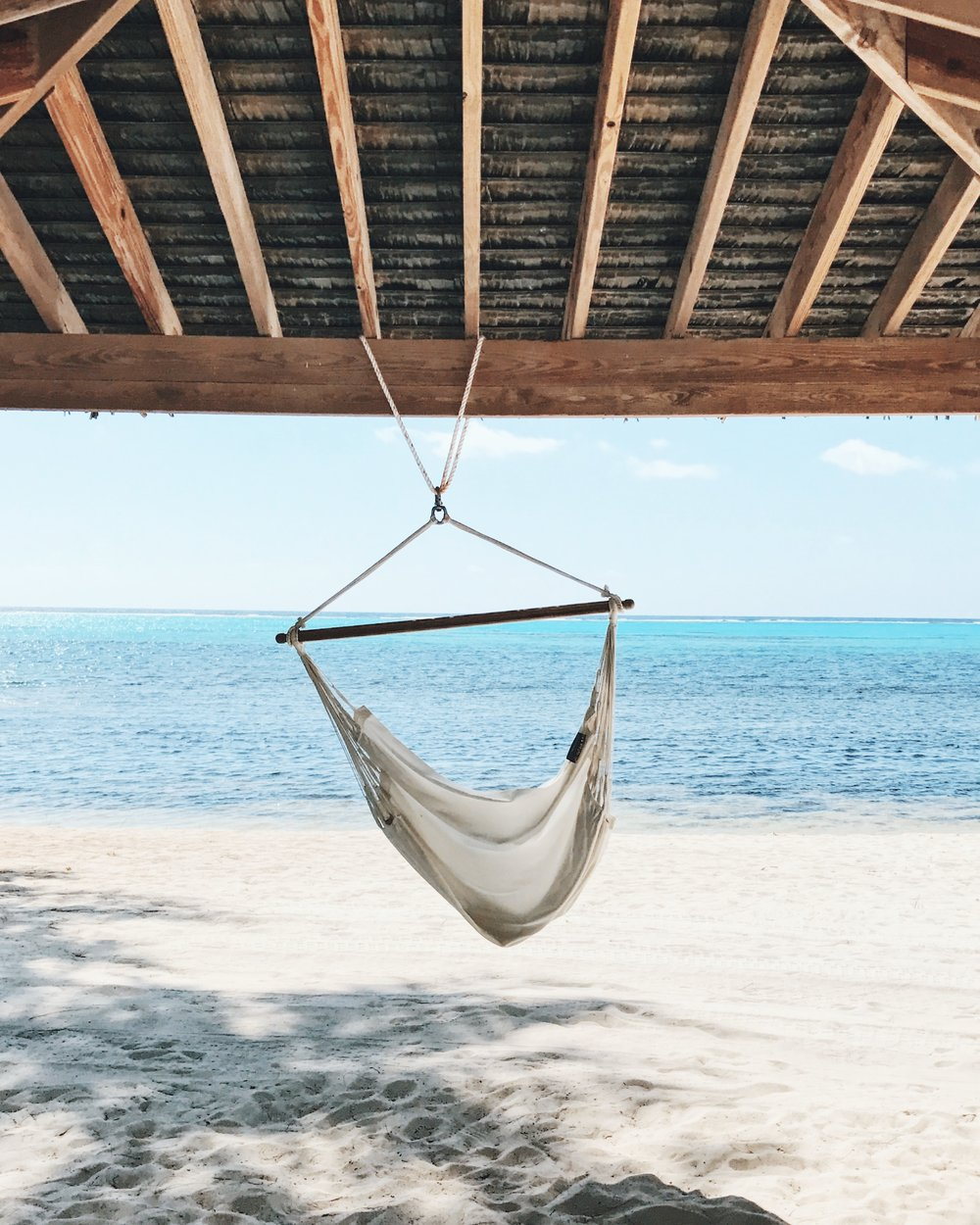 Little Cayman_Hammock