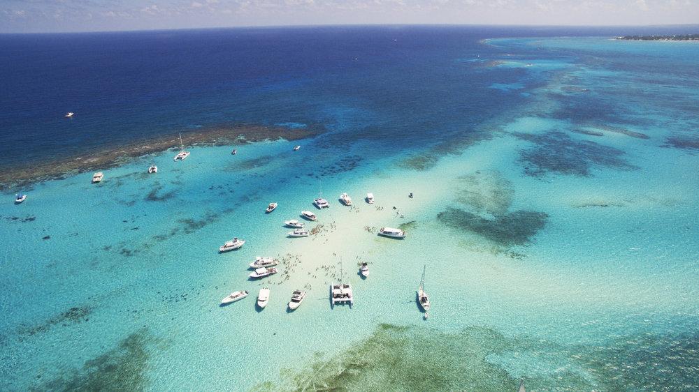 Stingray City_Cayman Islands