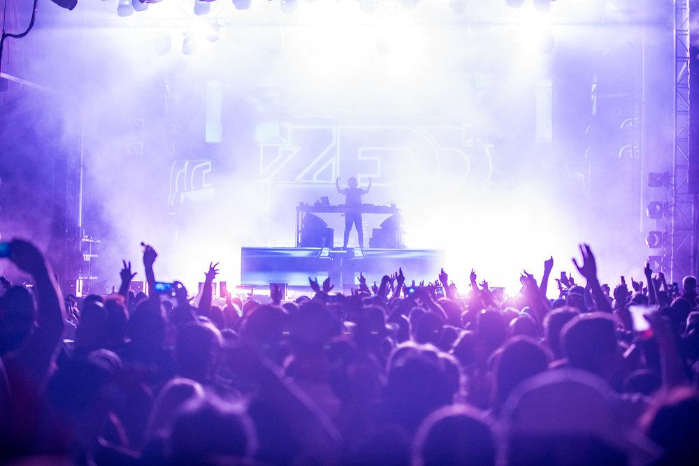 Zedd-@bluedotstudios-2-19.jpg