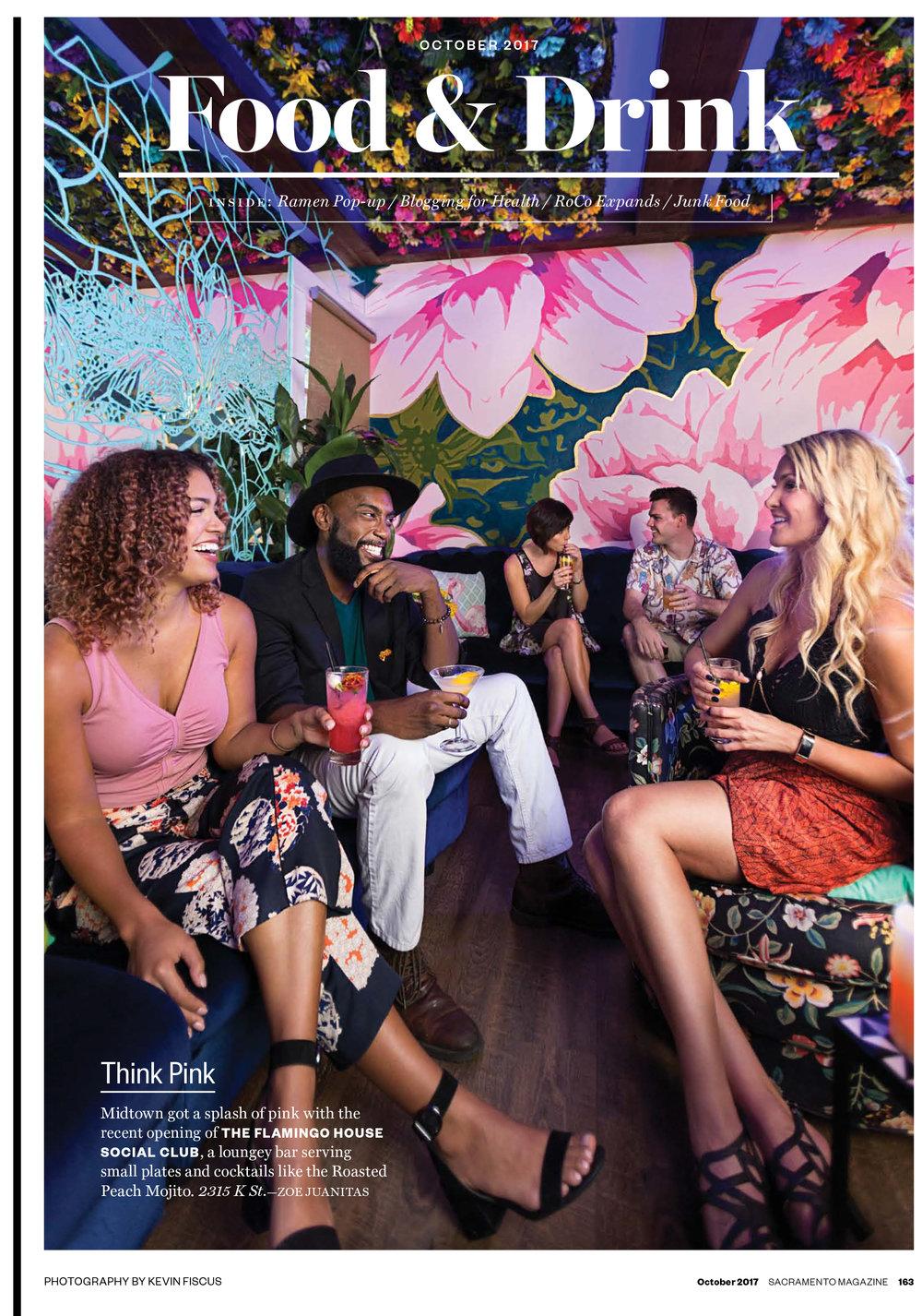 The Flamingo House for Sacramento Magazine