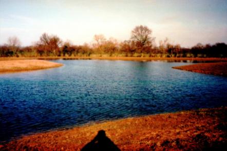 L2 1999.png