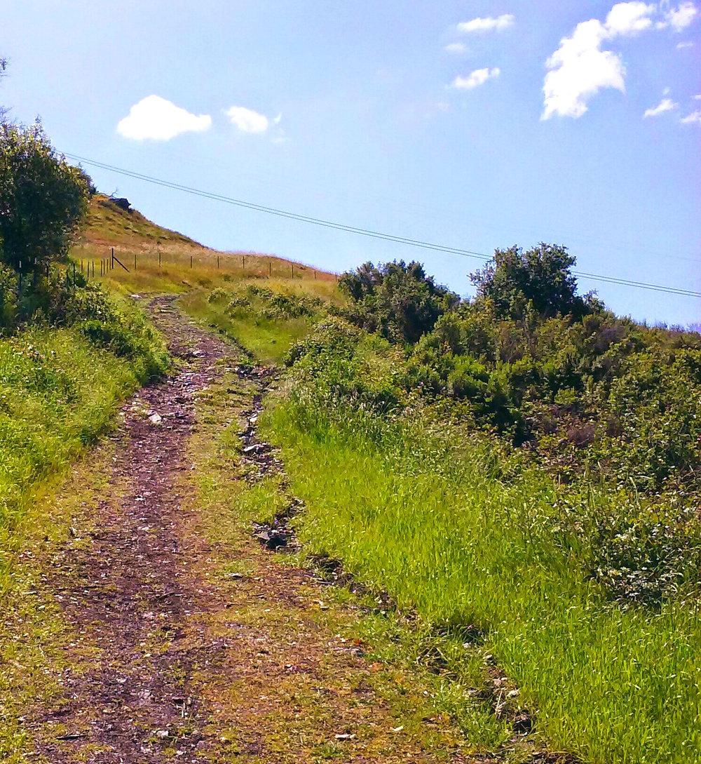 santa-teresa-county-park-51.jpg
