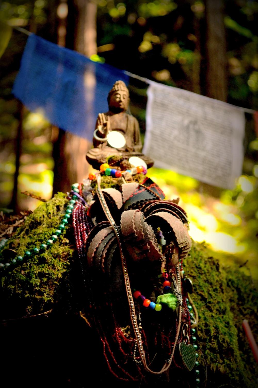 buddhas-2.jpg