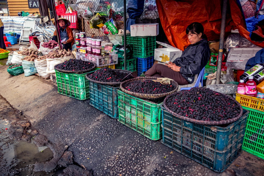 Mulberries being sold at the market in central Da Lat.