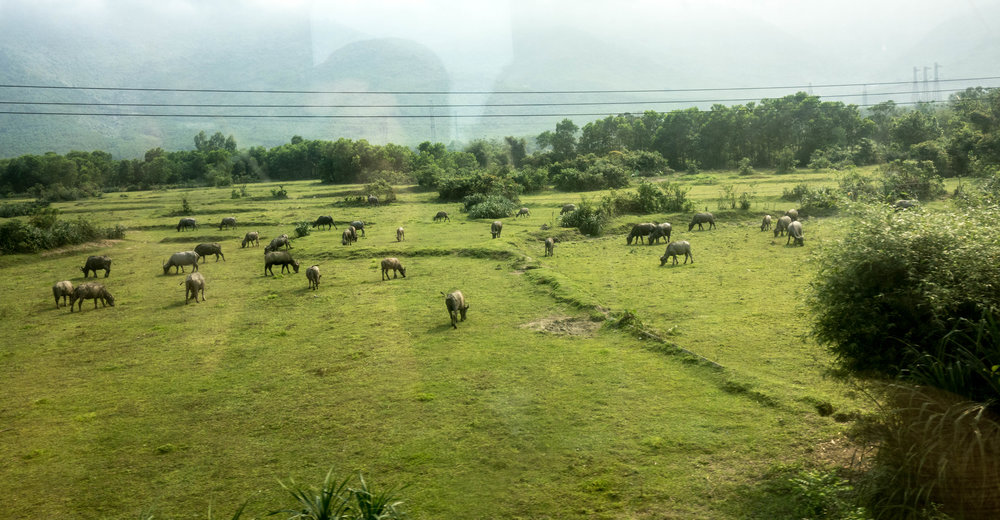 View from the train going through the Hai Van Pass
