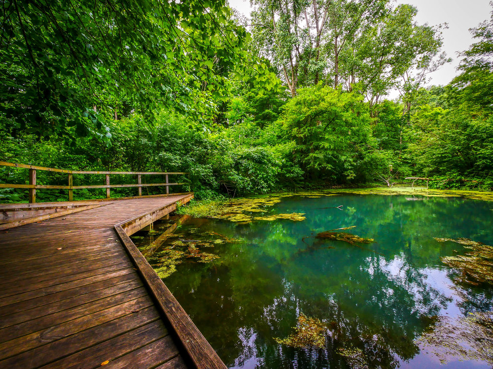 Walk around the lagoon at the Kalamazoo Nature Reserve. Just remember to wear bug spray.