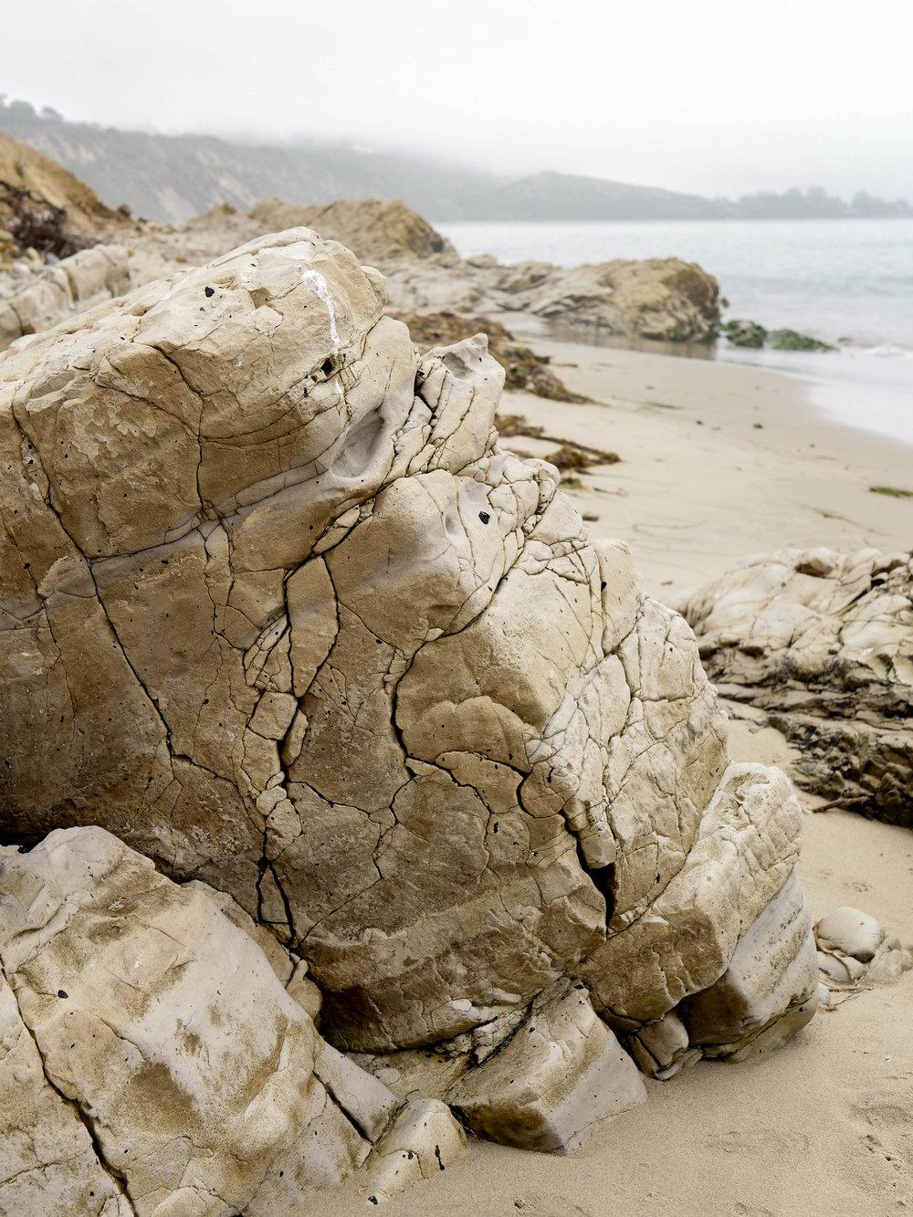 Geological wonderment at Carpinteria Bluffs Nature Preserve.