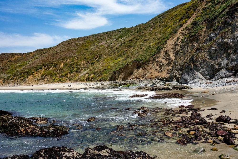 A beach at Pt. Reyes National Seashore.