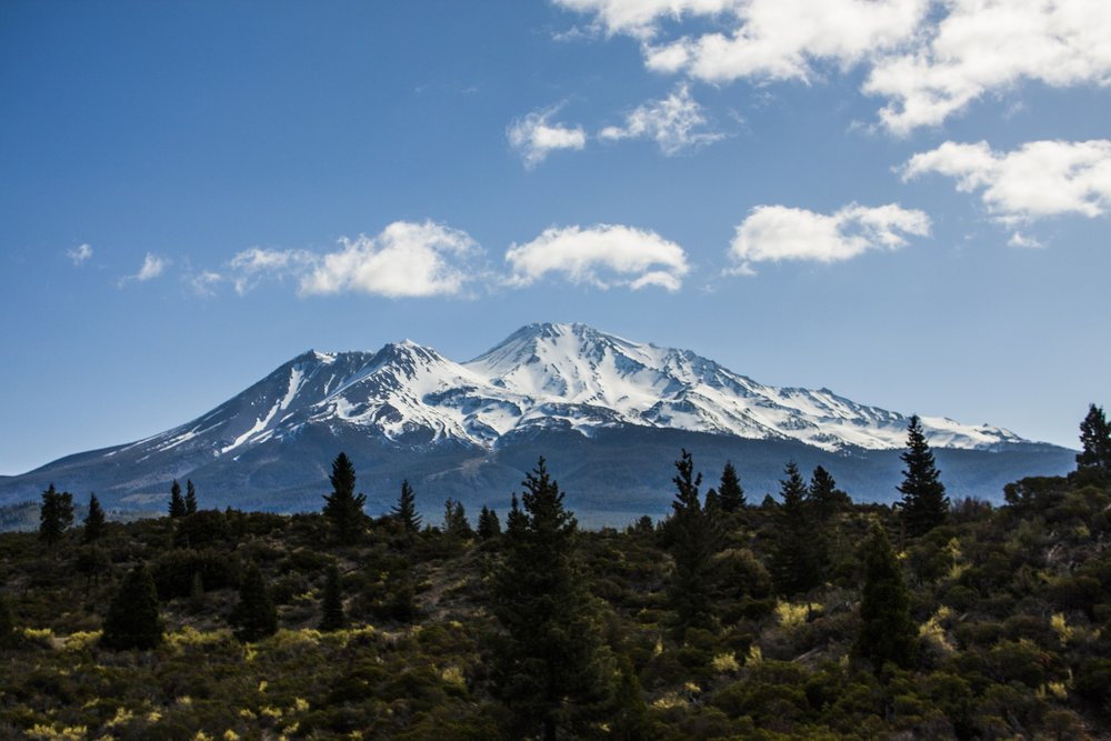 Mt. Shasta looms over the land.