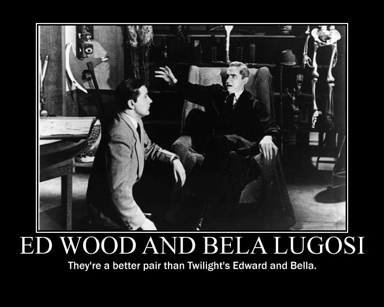ed_wood_and_bela_lugosi___they___by_saki_senpai-d2xfqjv
