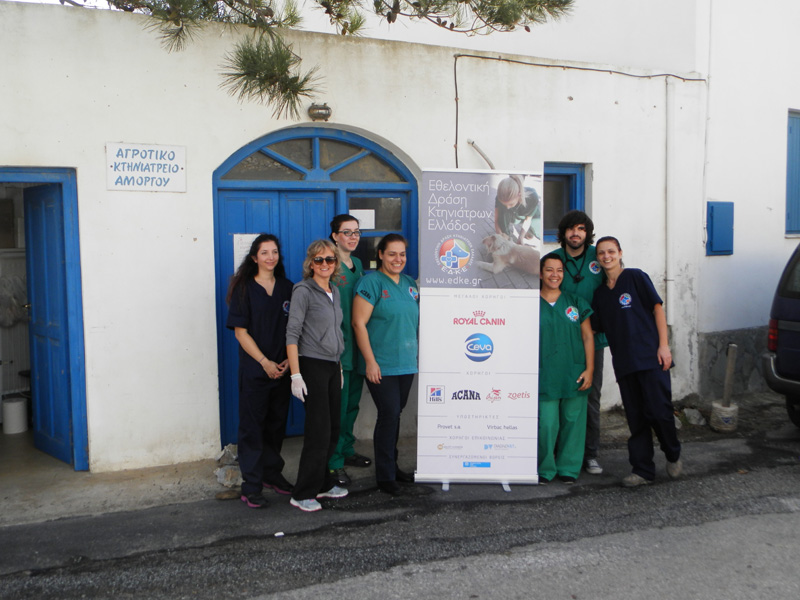 The team of the Greek Volunteers Vets with the president of Filozoiki Merimna Amorgou, Angeliki Palioura