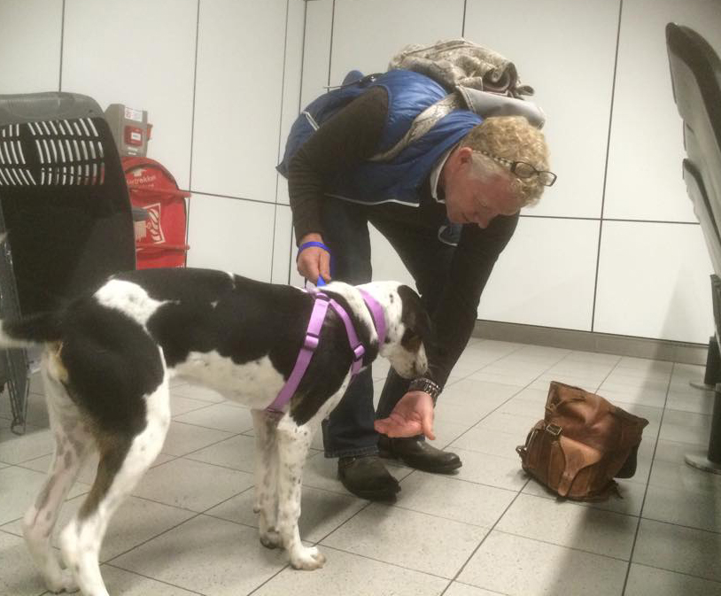 Arrival at the Dutch airport and her new dad gives her some treats