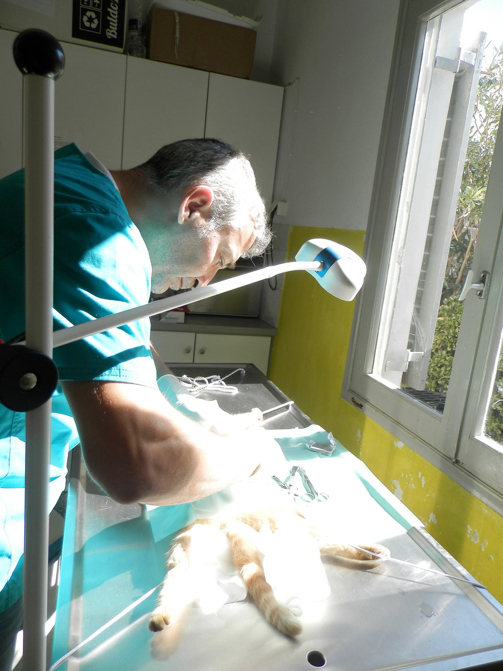 Dr. Manolis Vorisis during the work.