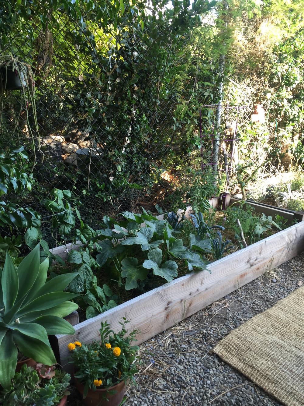 Aele's garden