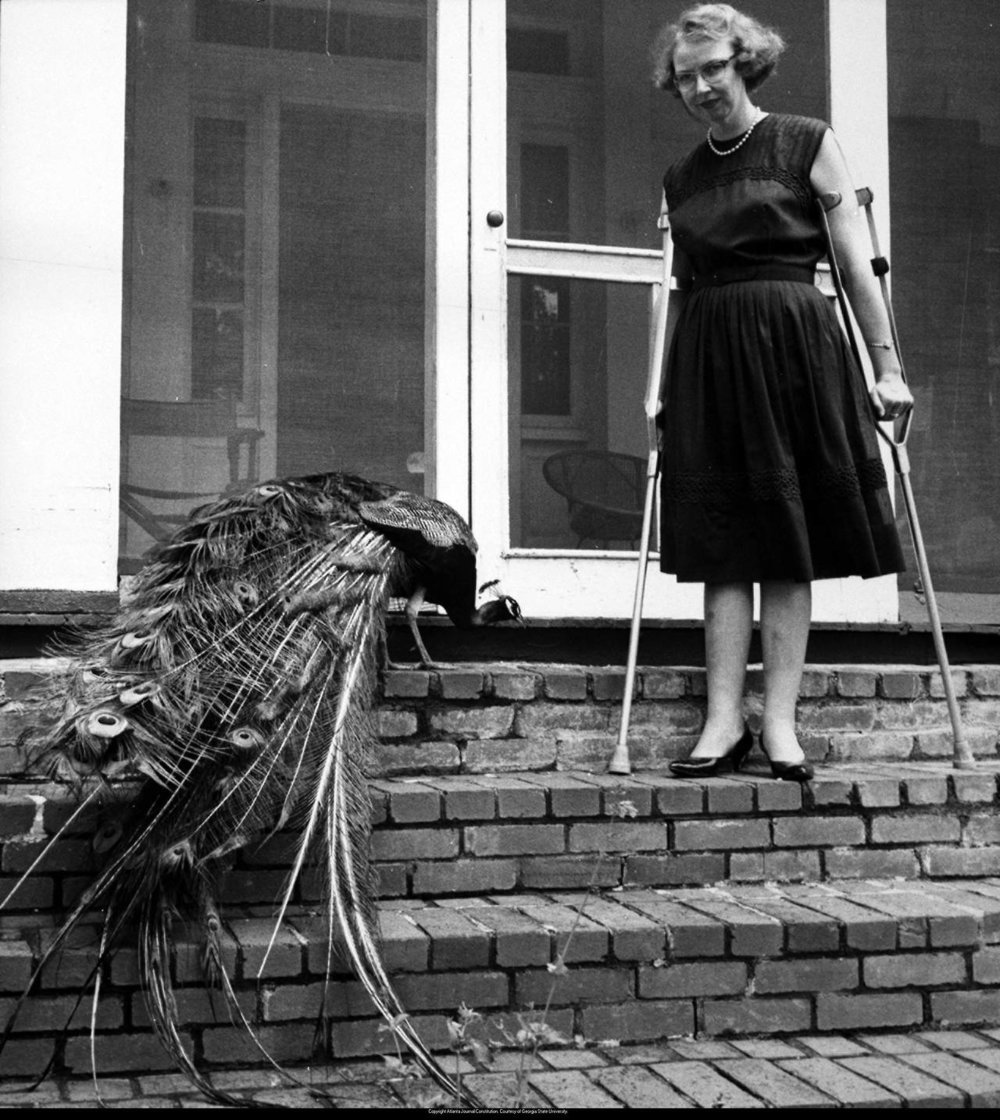 Flannery O'Connor and a peacock