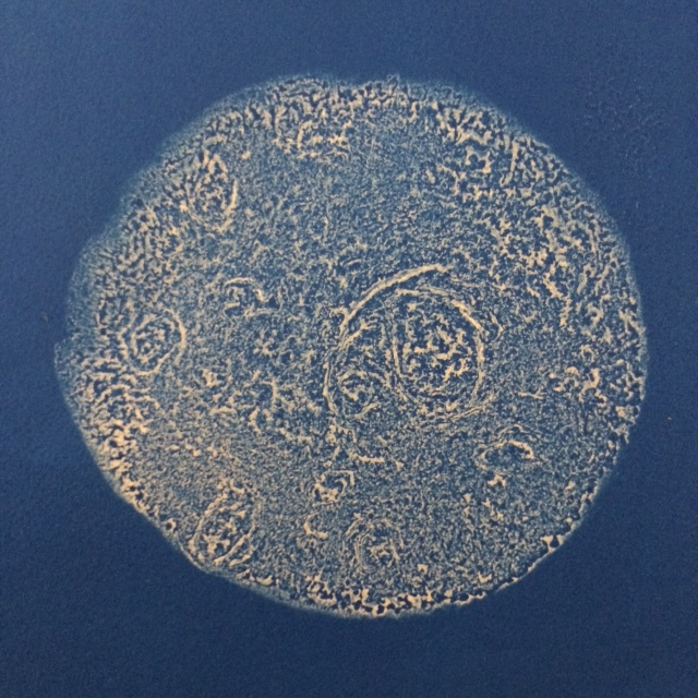 tortilla moon by jack sanders