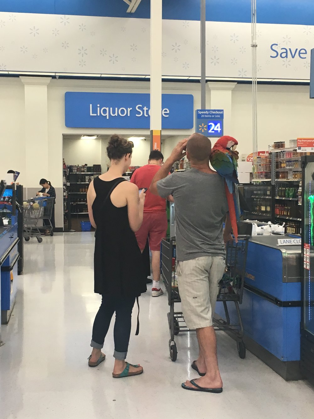 "parrot in Walmart: real life vs ""Confederacy of Dunces"" moment?"