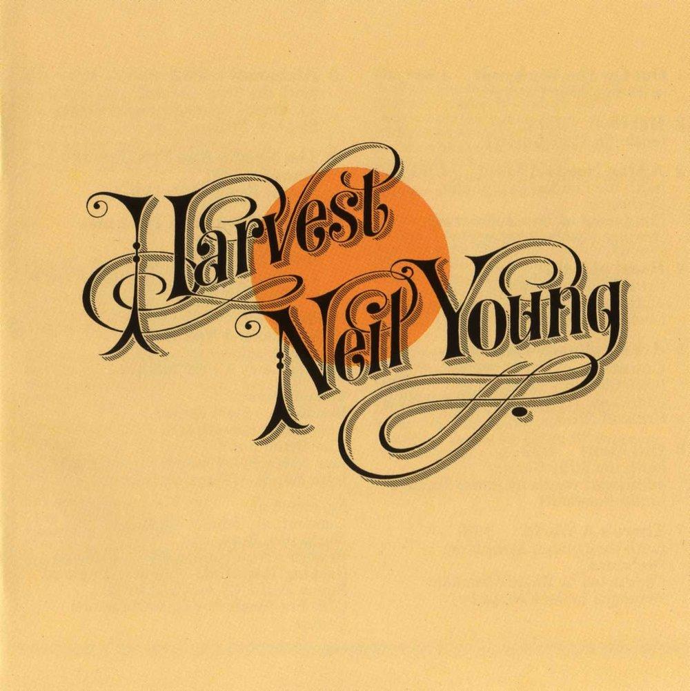Shriya Samavai_Harvest Neil Young.jpg