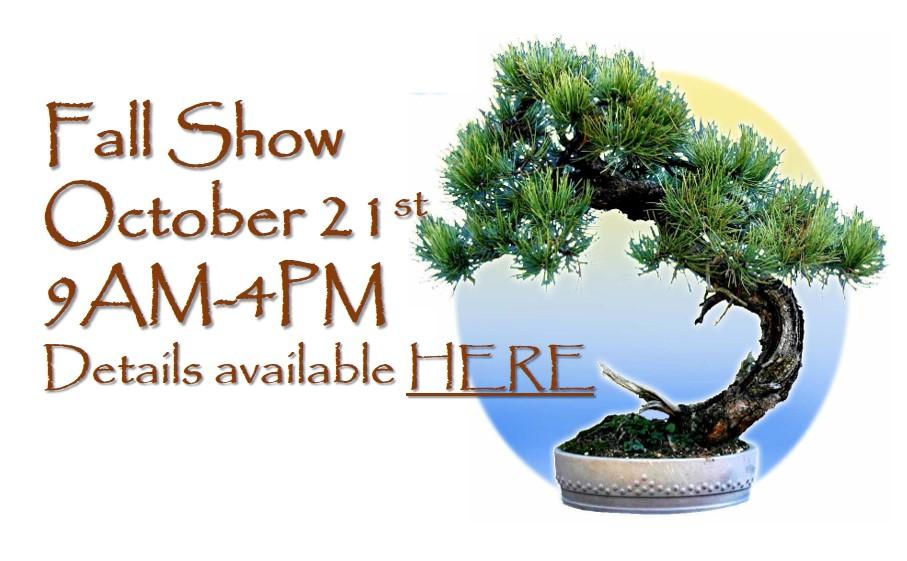 bsop fall show