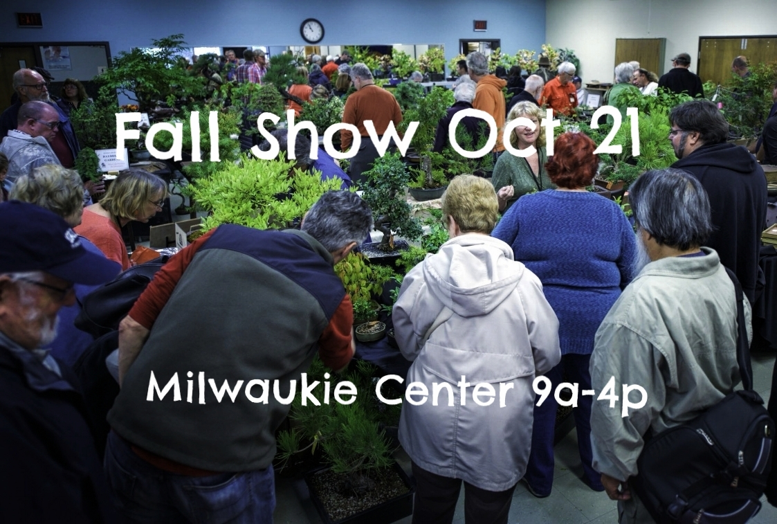 Fall Show