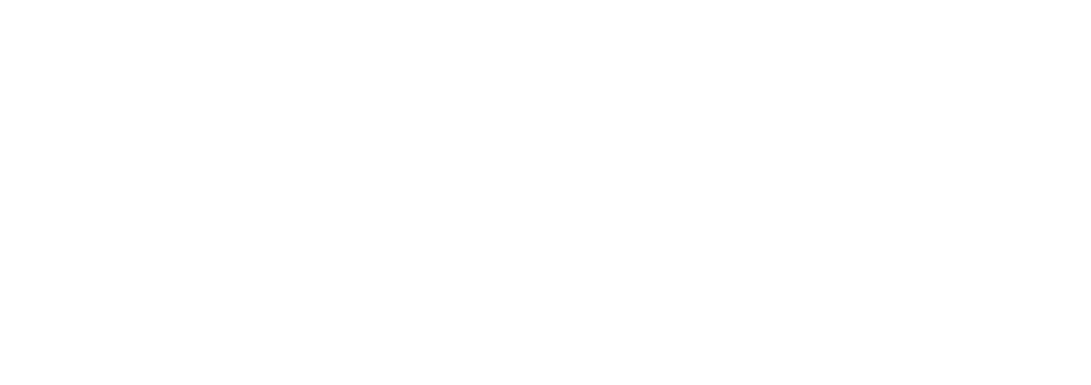 Bolt Logo (flat) - White on Transparent.png