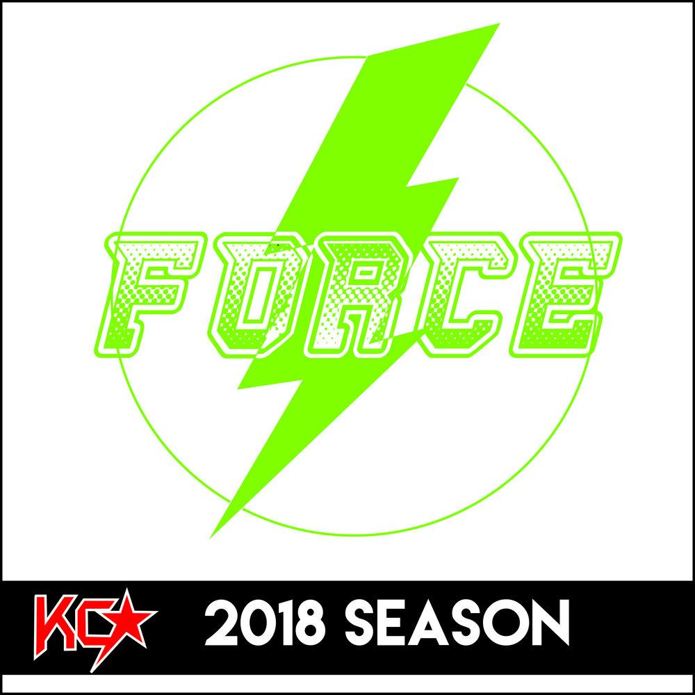 05 force-01.jpg