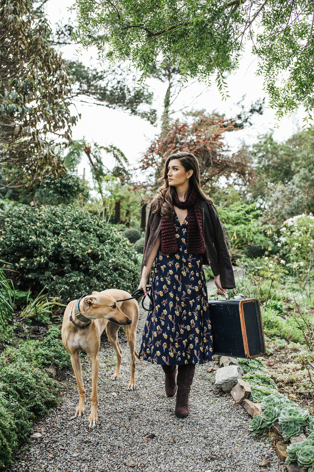 hillary jeanne photography - teryn grey, greyhound dogs, fashion blogger, travel blogger