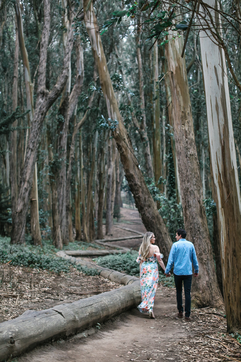 San Francisco engagement session in the Presidio at Lover's Lane