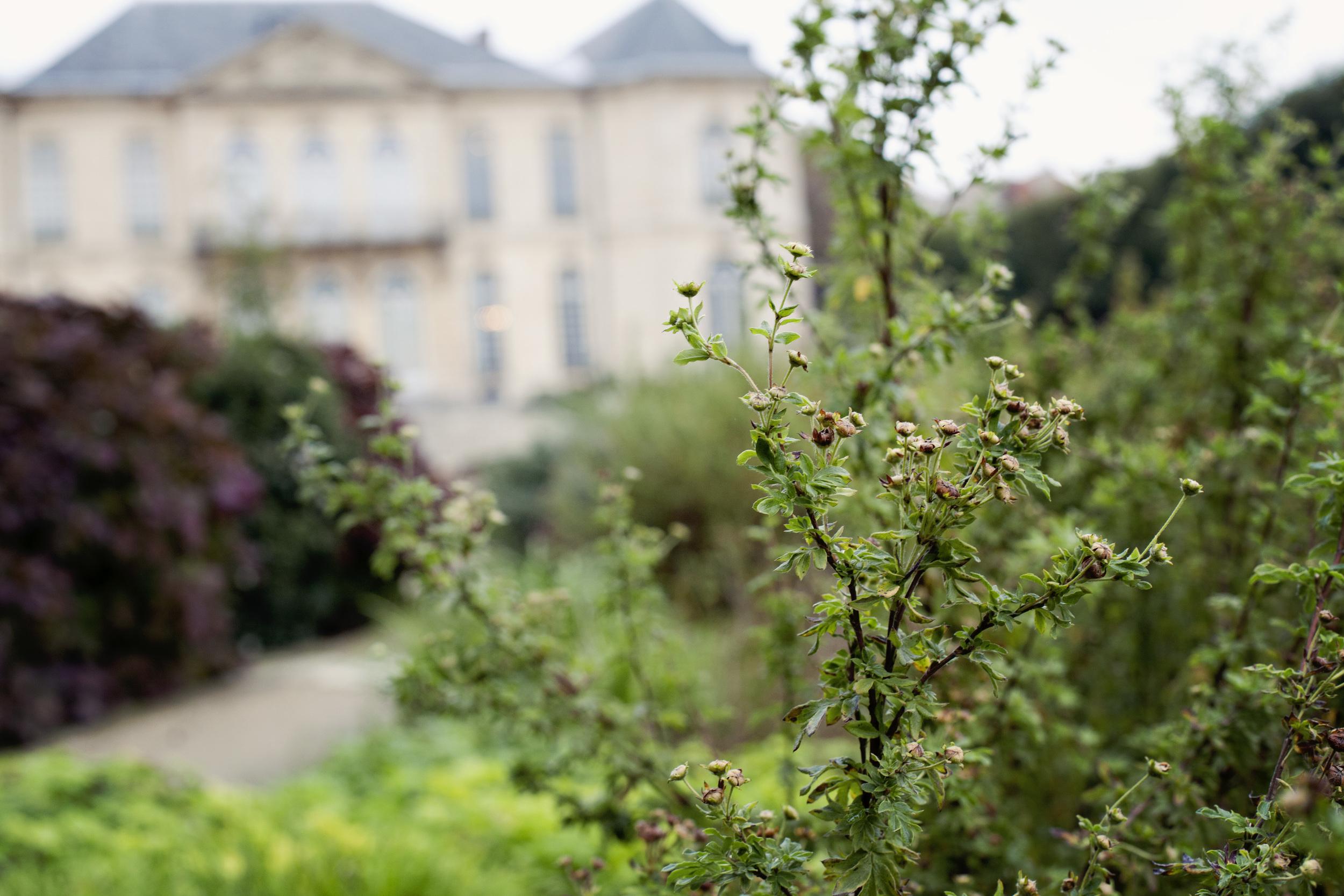 Paris_20121009_0107_1