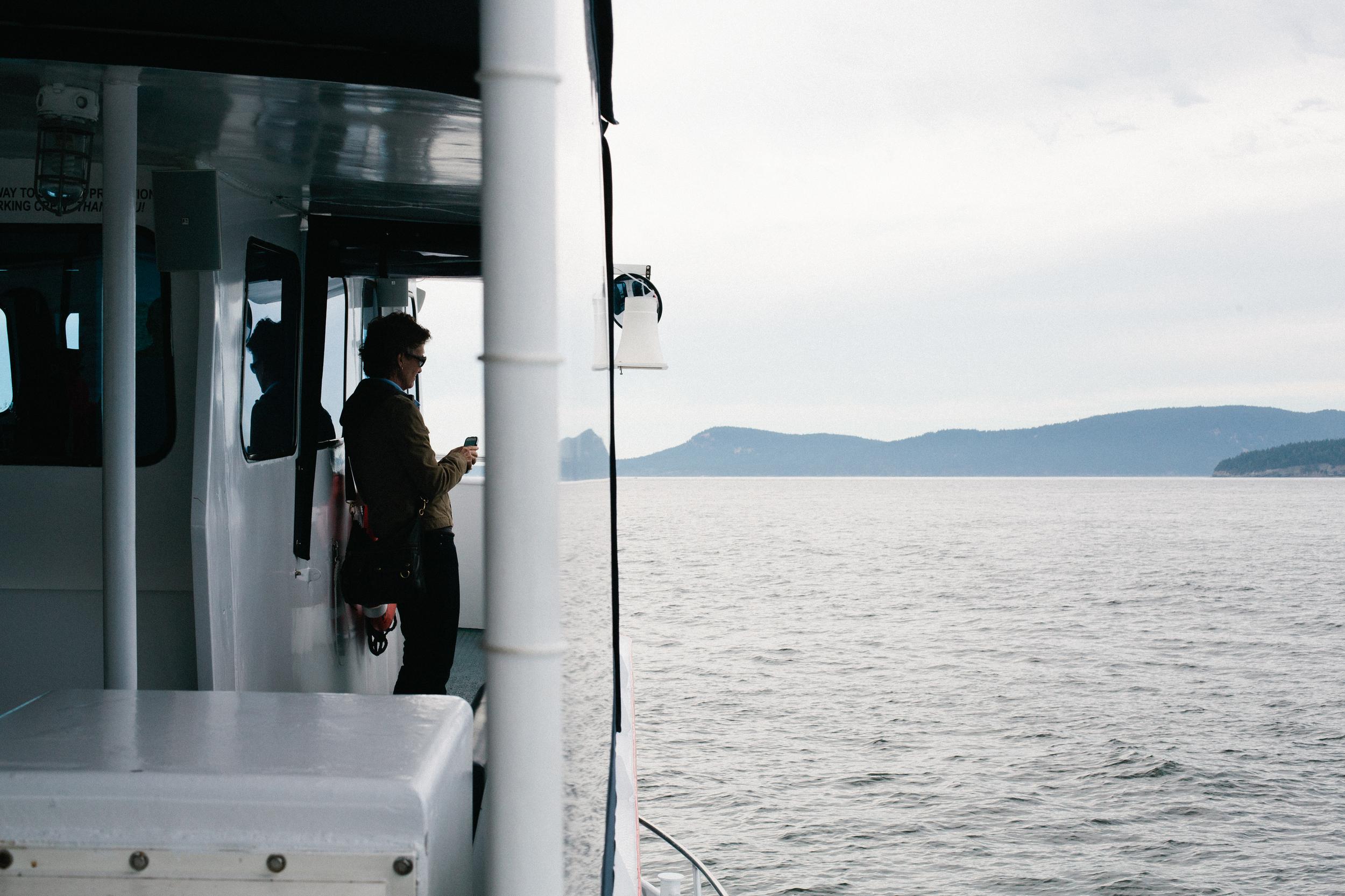 seattle whale watching anacortes washington