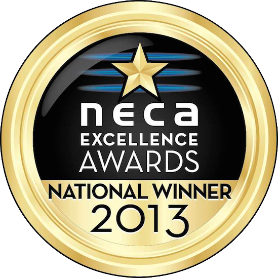 NECAGoldAwardsMedals2013NationalWinner copy.png