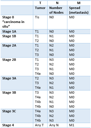 Table 2. Information about TNM are combined and the patient is given a final stage. The patient can have any of the above combinations.