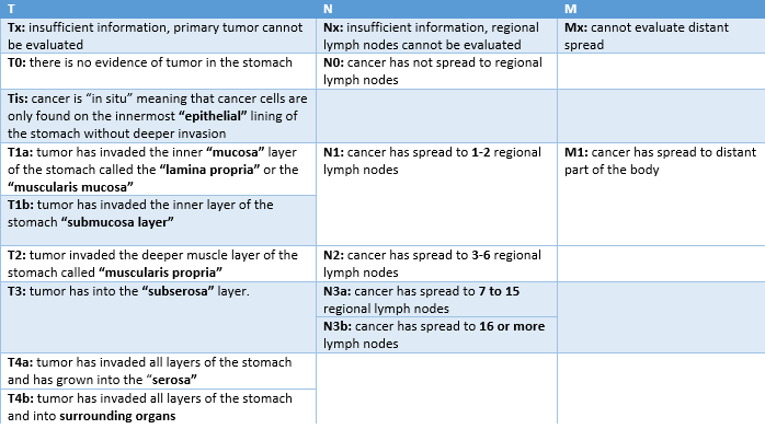 Table 1. Details about TNM staging for stomach cancer