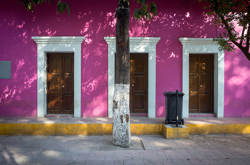 A tree and its white trunk match the door frames of one of the many colorful buildings surrounding the central plaza of Batopilas.
