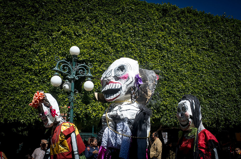 Large paper-mâché figures walk down the De Sopena in Guanajuato.  In the background are immaculate Indian laurel trees that line the Jardín de la Unión plaza.