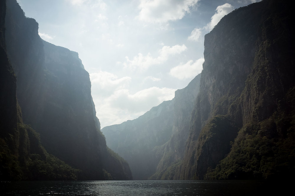 The Cañon de Sumidero was formed about the same time as the Grand Canyon and is equally remarkable, with walls reaching heights of 1000m.  Visitors exploring the park via the daily boat tours encounter a panoply of wildlife, including Brown Pelicans, Little Blue Herons, Snowy Egrets, and American Crocodiles.