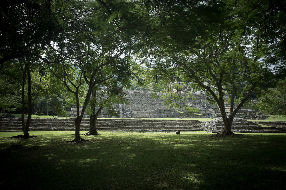 palenque1a.jpg