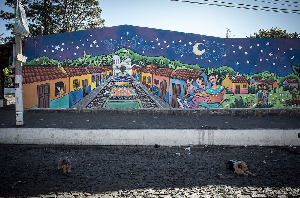 Dogs cool themselves in front of one of the many murals in Concepción de Ataco along the Ruta de Flores, El Salvador.