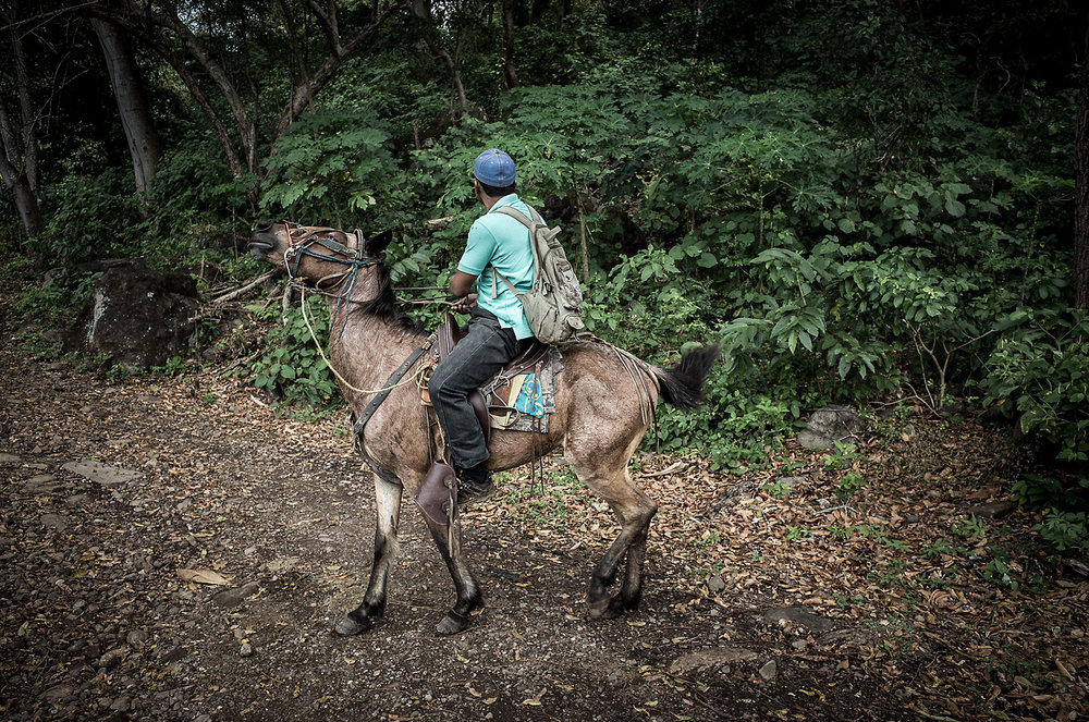 A horse fusses with his rider on the trail to Cascada San Ramon, a waterfall on Volcano Maderas, Nicaragua.