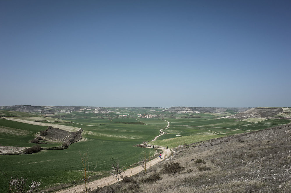 Situated between the wined hills of Rioja in the east to the wet mountains of Galicia in the west is the dry plateau of the Castilla y León, known as the Meseta. Temperatures in the summer can reach the 40s, where the absence of trees offers no relief from the sun.