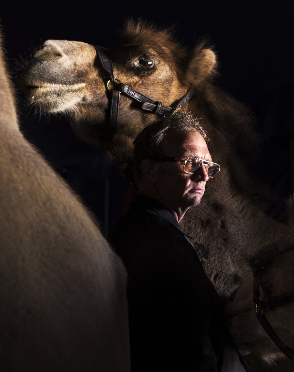 Adam Baker, an animal care taker for Coronas of Hollywood, a Florida circus performing at The Great New York State Fair in Syracuse, N.Y., tends to a group of Bactrian camels before for their performance on Sept. 2, 2017.