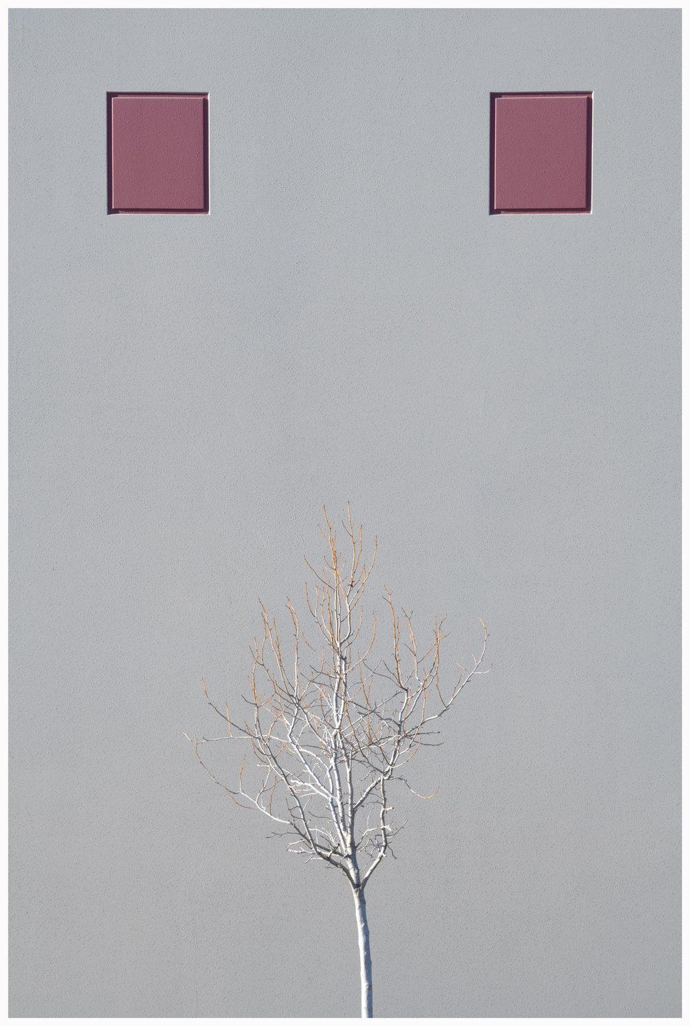 Minimalist2.jpg