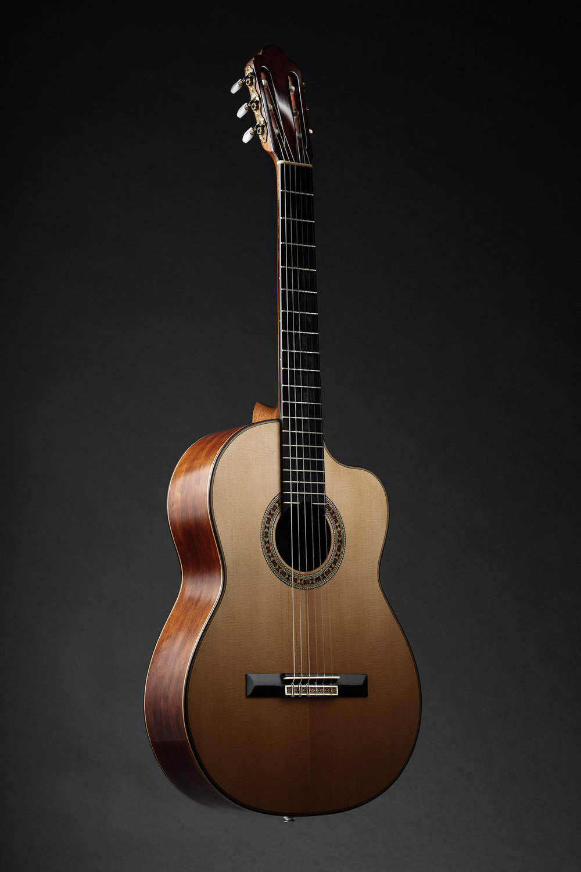 guitar1_new.jpg