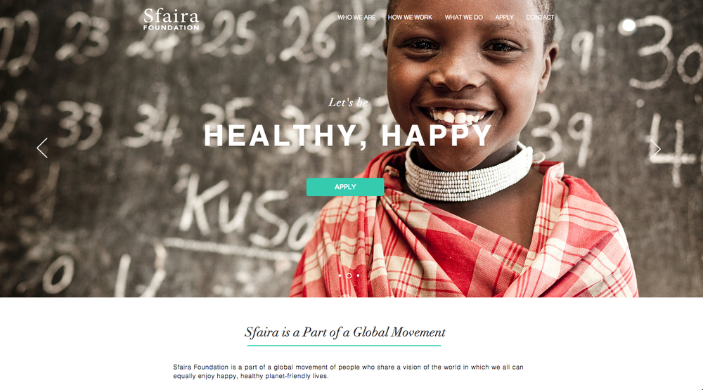 Sfaira Foundation