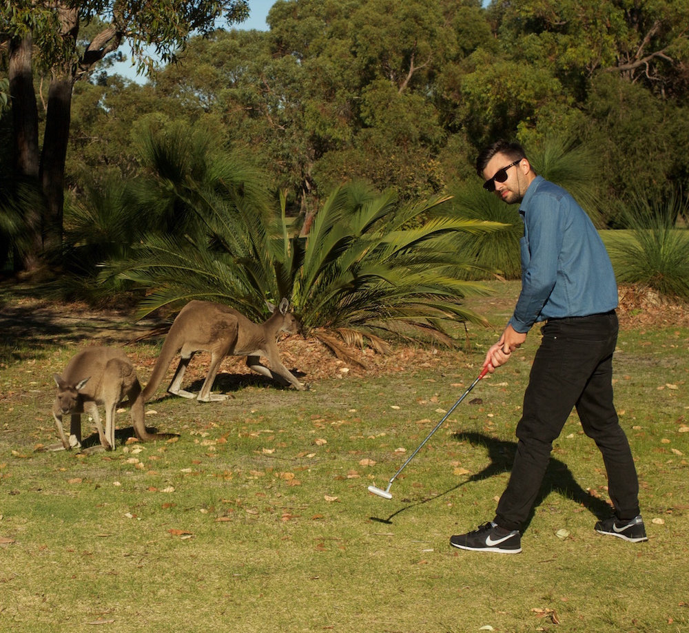 Western Australia 2015. Playing golf with kangaroos.